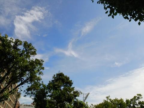 空の青さと、雲の感じが素敵です!